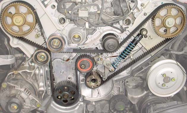 A8 Timing Belt Jobs at Guy's Automotive Tampa